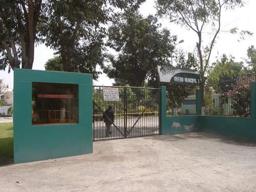 El vivero municipal en surco peru distrito de lima en for Vivero municipal